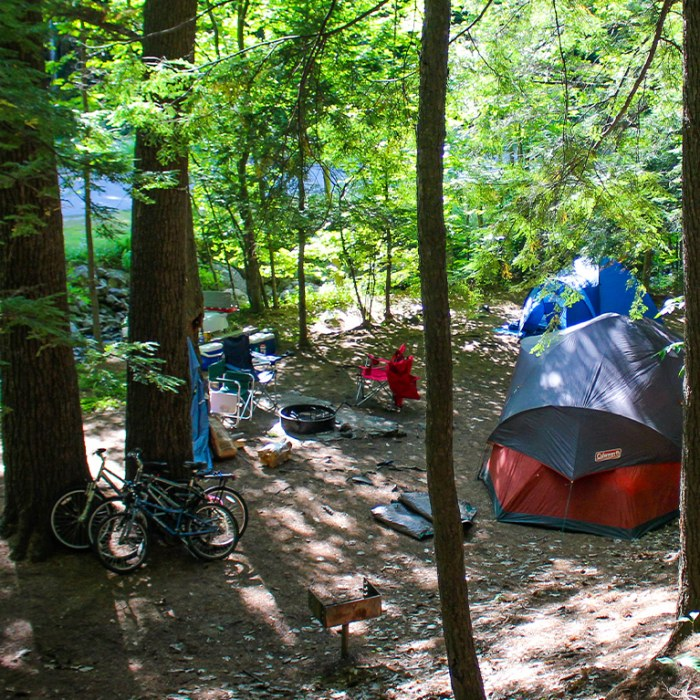 Campsite in the Woods